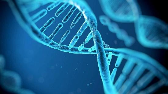 Genetics PGD & PGS