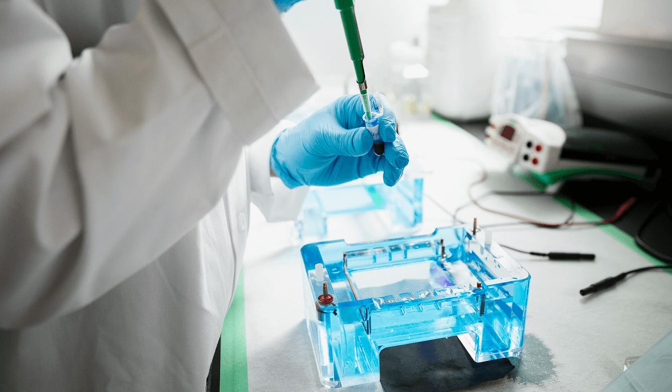 Fertility Special Laboratory Techniques